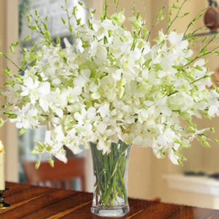 40 White Orchid Arrangement: