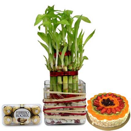 Lucky Sweet Combo: Lucky Bamboo