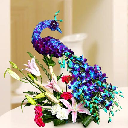 Floral Peacock Charm: Orchid Flowers in Dubai