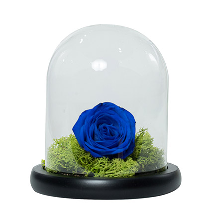 Elegant Blue Rose: Ramadan Flower Arrangements