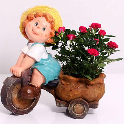 Lavish Rose Plant in Baby Cart Pot: