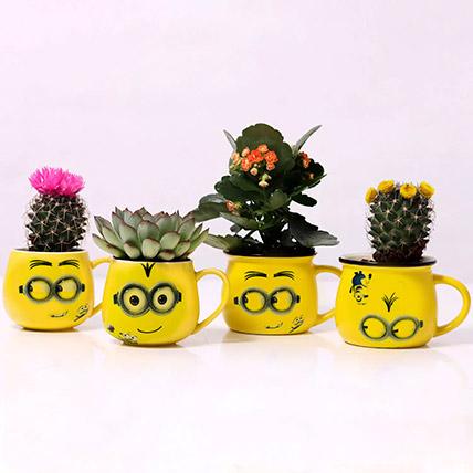 Set of 4 Plants in Emoticon Mugs: