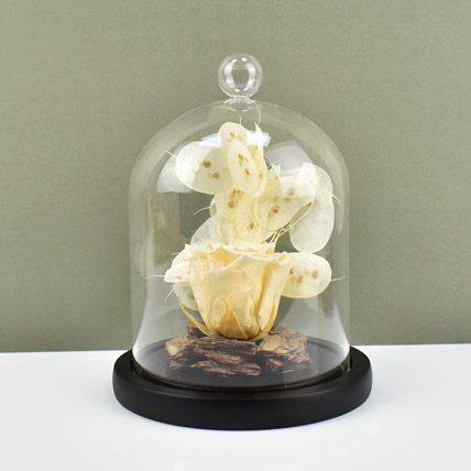 Peach Forever Rose In Glass Dome: New Arrival Gifts in Dubai
