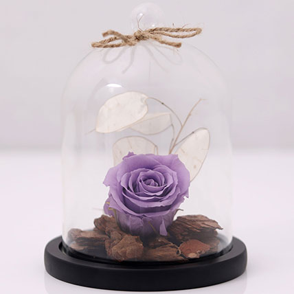 Purple Forever Rose In Glass Dome: Housewarming Gift Ideas