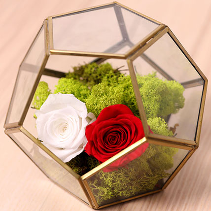 Red and White Roses In Designer Base: Forever Rose Dubai