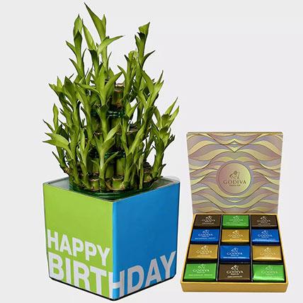 Lucky Bamboo Plant and Godiva Chocolates: Godiva Chocolate Dubai