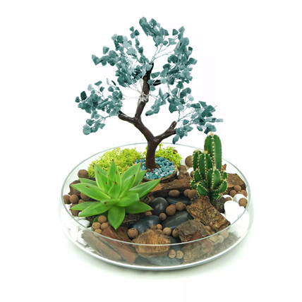 Potted Succulent & Cactus Under A Wishing Tree: Plant Combos