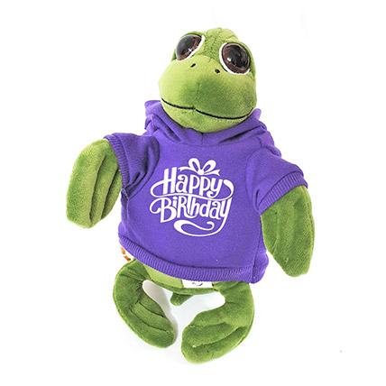 Cute Turtle In Birthday Hoodie: Soft Toys