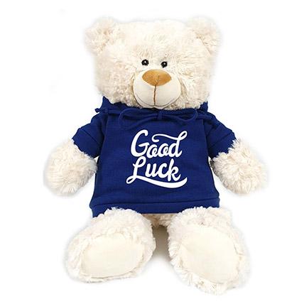 Fluffy Teddy With Blue Hoodie: