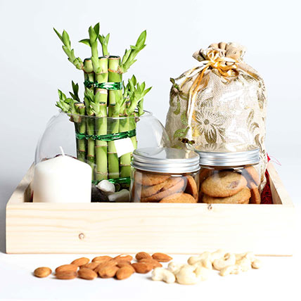 Snack Treat with Bamboo: Lucky Plants