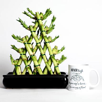 Triangle Shape Bamboo with Mug: Lucky Plants