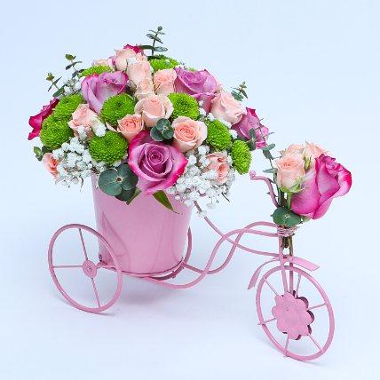 Melody Of Flowers: Chrysanthemum Flowers