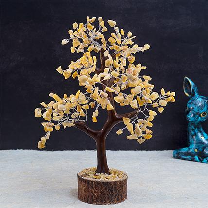 Orange Quartz Wish Tree: Plants for Birthday Gift