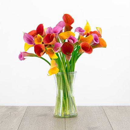 Beautiful Mixed Calla Lilies Glass Vase: Calla Lilies Flower
