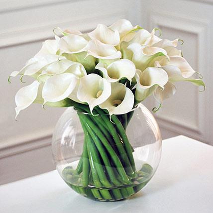 Serene White Calla Lilies Fish Bowl: Calla Lilies Flower