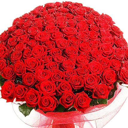 500 Red Rose Bouquet: Pakistan Gift