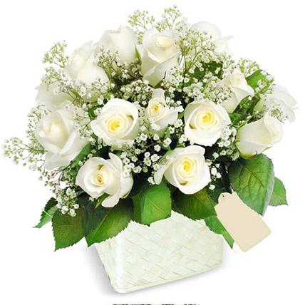 Pot Of White Roses:  Flower Delivery Sri Lanka