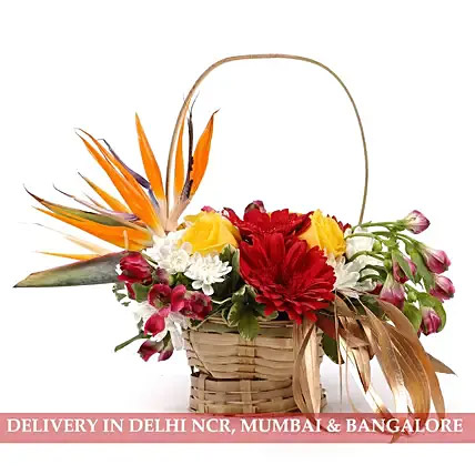 Colourful Basket of Flowers