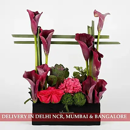 Exotic Arrangement of Purple Calla Lilies