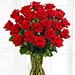 50 Red Roses Bunch