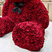 800 Red Roses Teddy Bear