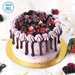 Sugar Free Chocolate Berry Delight- 1.5 Kg