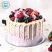 Sugar Free Vanilla Berry Delight- 1.5 Kg