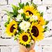 Sunflower Galored Bunch