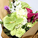Beautiful Calla Lilies and Carnations Bouquet SG