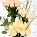 Grandeur Mixed Roses In Vase SG